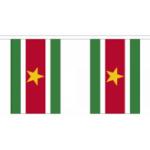Surinaamse vlaggenlijn 3m